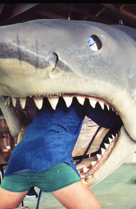 Rare Color Photos From the Filming of 'Jaws' on Katama Bay