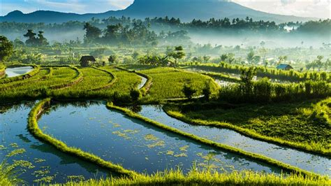 Off the tourist trail in Bali: the best less-visited spots